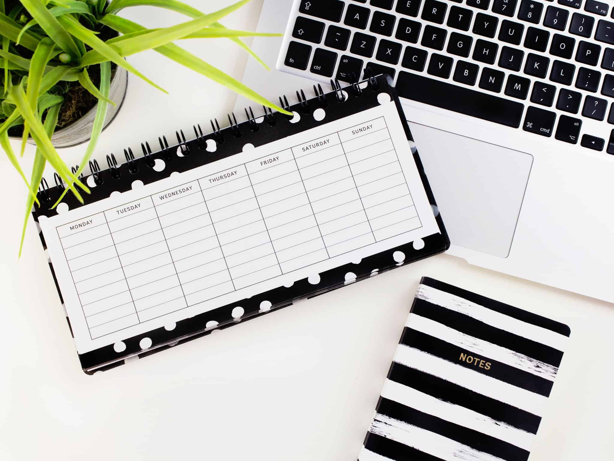 Best Planners For Students To Keep Things On Track